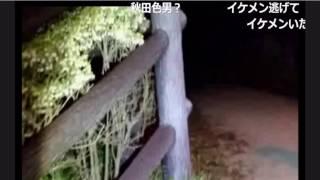 【SD】心霊スポット外配信 ~東北編~「一つ森公園」1