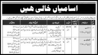 Jobs Dec 2016 Ministry Of Law & Justice Islamabad Jobs