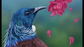 Speed painting bird (Tui)