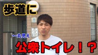 岡崎市の歩道に無数のトイレが存在している。というのが気になったじょ...