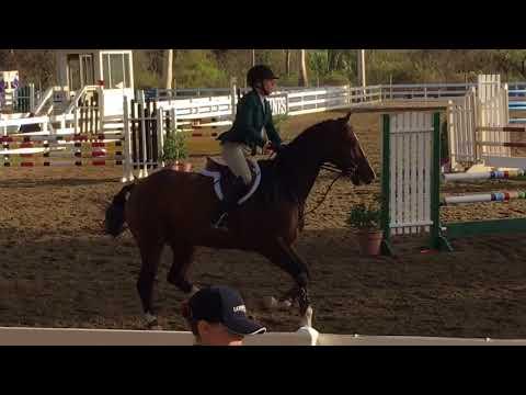 Blake Lindsley & Diorado VDL: $5000 Open Equitation Challenge