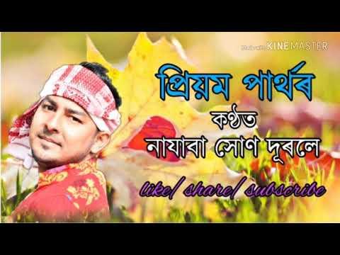 Najaba Hun durole audio|by priyam partha and puja priya