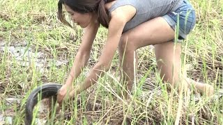Amazing beautiful girl Fishing - catching fish in cambodia - Catch A Lot Of Fish