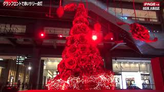 今年は赤一色に──。大阪市北区の複合商業施設「グランフロント大阪」の...