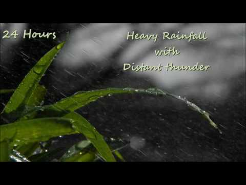 24 Hours - Heavy Rain with Distant Thunder, Sounds for Sleep and relaxation