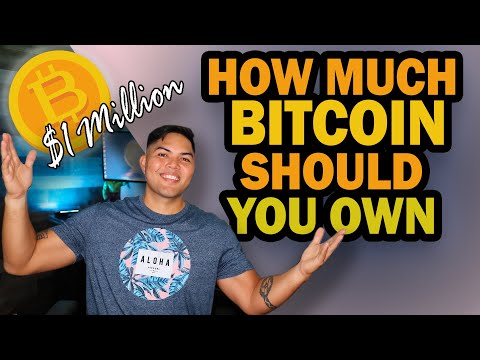 How Much Bitcoin Should You Own? Less Than You Think to Be in the TOP 1%