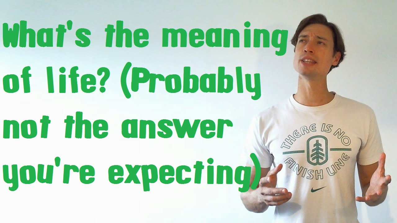 An opinion on the answer on what is the meaning of life