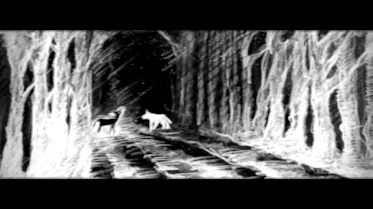 Black wolf white wolf crossroadsfilm com youtube