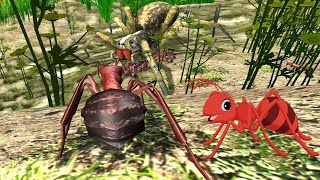 Ant Simulation 3D - Wolf Spider Vs Ants Formica Rufa (Wood Ants) - Gameplay
