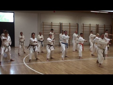 Karate in der SV Böblingen