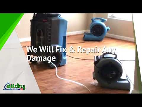 All Dry USA - Mold, Water, Fire Damage Restoration Company