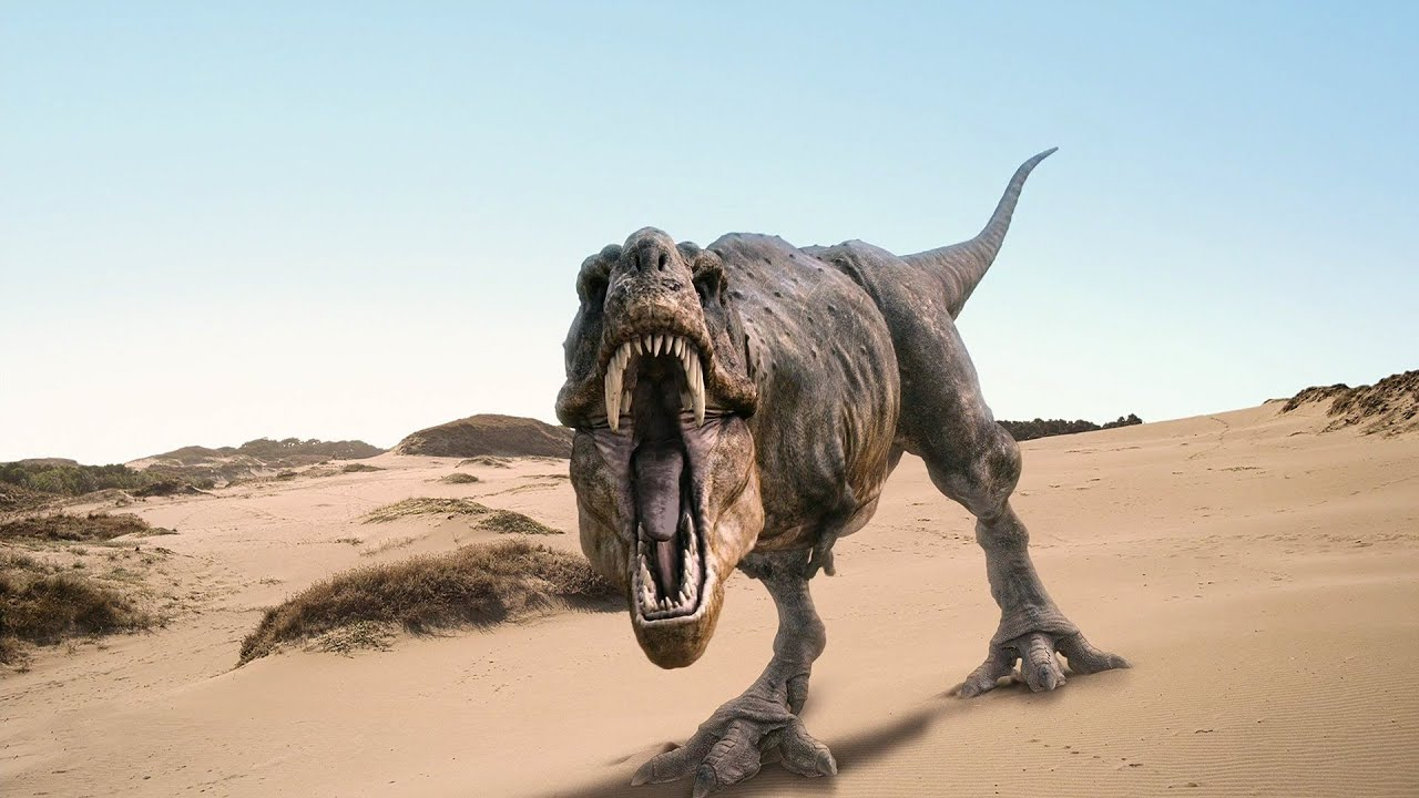Real Dinosaurs T Rex 10 Deadly Dinosaurs - ...