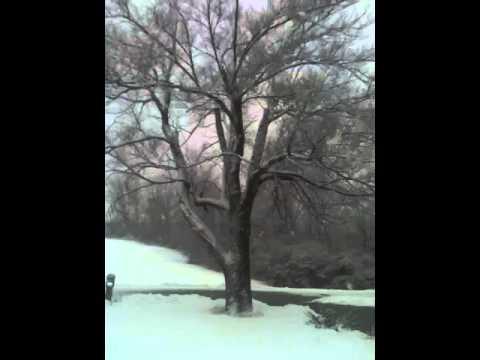 Clay County, Missouri snow. 2-25-2013