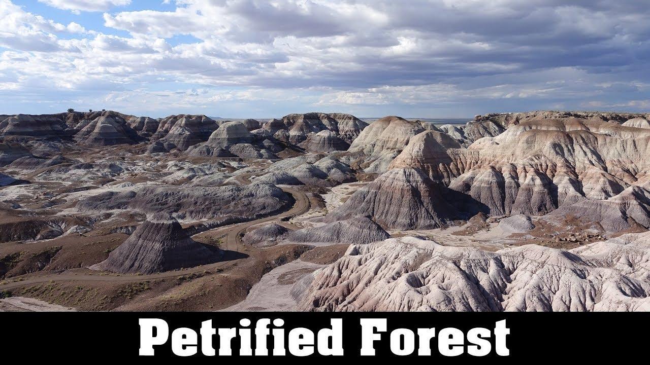 Petrified forest national park in arizona youtube petrified forest national park in arizona sciox Choice Image