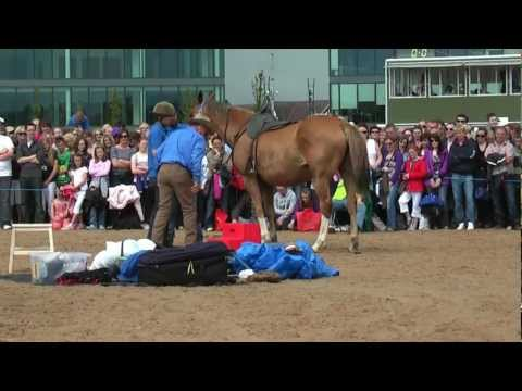 Dublin Horse Show Monty Roberts Not Standing to Mount RDS Dublin Horse Show 2010