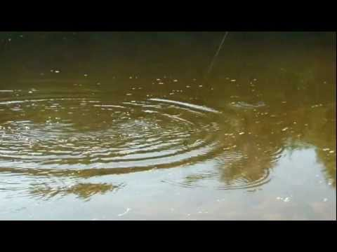 Fishing Saco River Maine