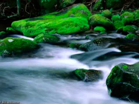 The River - Brian Doerksen