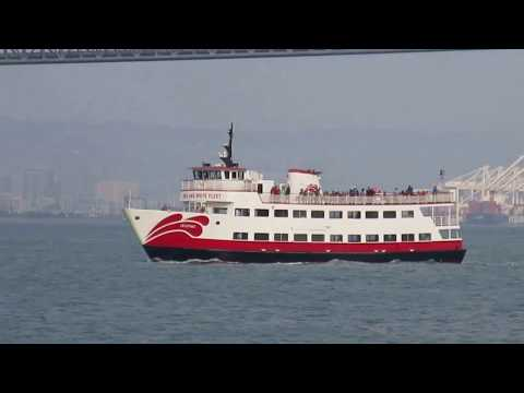 """Zalophus"" Ferry Red & White Fleet San Francisco Bay California"