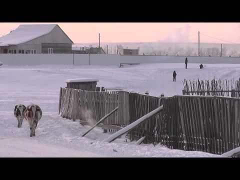 golaya-saha-yakutsk-saysari
