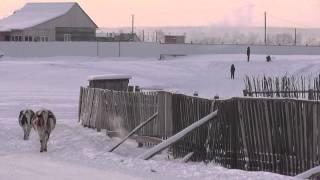 My lovely Village (Republic Sakha (Yakutia)) Outdoor -43C. 我最喜欢的村庄在街上-43霜冻(雅库特)