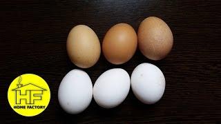 Repeat youtube video Izbjeljivanje jaja