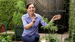 How-To Grow Fruits and Vegetables in Containers | IN BETH'S GARDEN