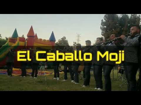 El caballo mojino / Banda La Chacaloza De Jerez.