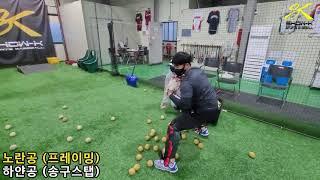 쇼케이 스포츠 베이스볼 포수 프레이밍 & 송구스…