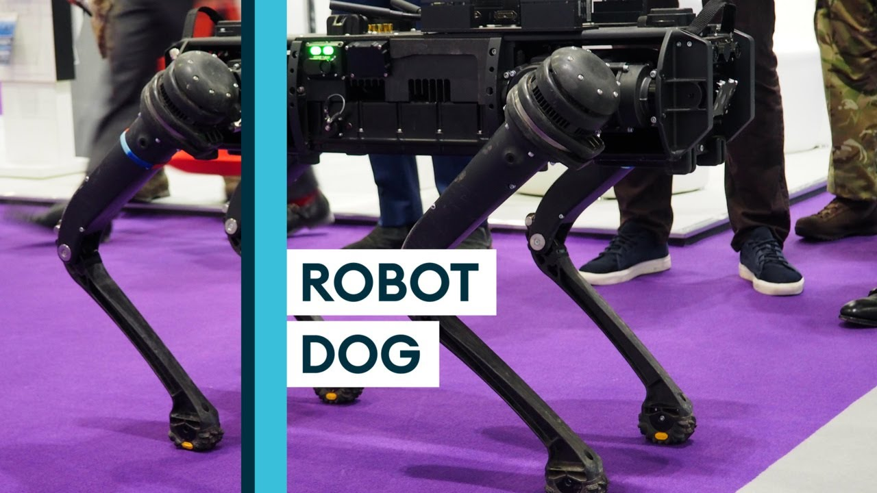 Could This Robot Replace Military Working Dogs?
