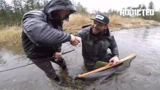 Monster Chrome Winter Steelhead Hen | Fishing Addicts NW