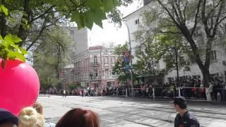 Собаки открыли парад в Ростове-на-Дону