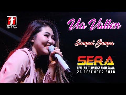Via Vallen - Sampai Jumpa (Endank Soekamti) - OM. SERA live Ambarawa, Penonton ikut bernyanyi sedih