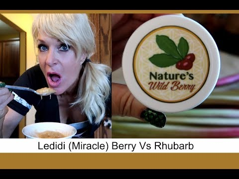 Ledidi (Miracle) Berry Vs Rhubarb