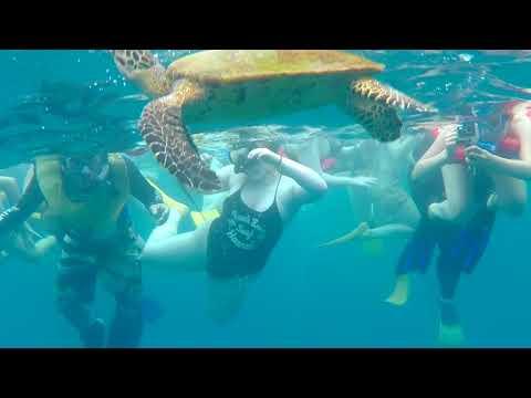 Costa Rica Travel Video 2017