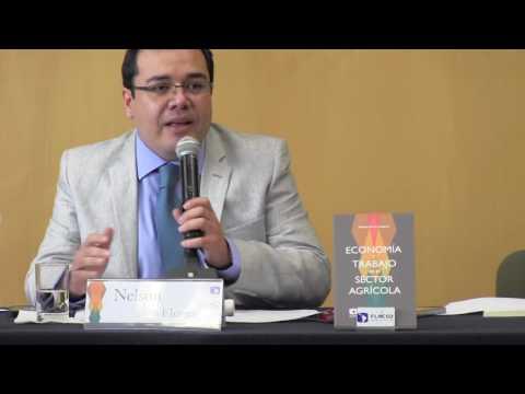 Economía y trabajo en el sector agrícola - Presentación