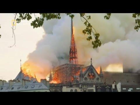 Musieli ratować najcenniejsze dzieła sztuki przed płomieniami! [Notre Dame w ogniu]