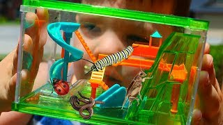 Caleb Pretend Play with REAL Bugs Playground For Insects with Fun and Crazy Kids Aubrey