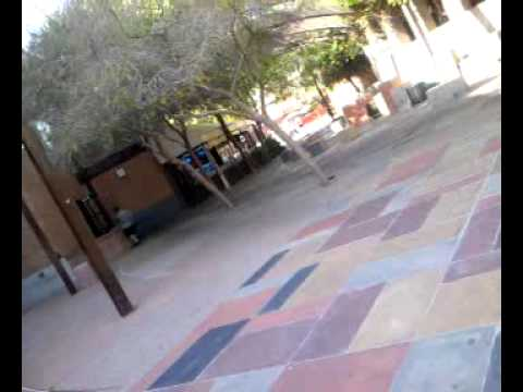 Homelessness in tempe