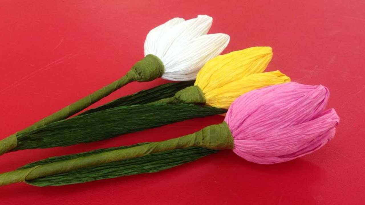 How To Make Tulip Crepe Paper Flowers Flower Making Of Crepe Paper
