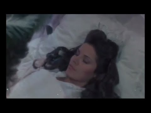 Sleeping Beauty -  Movie