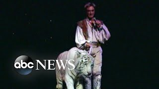 The las vegas performers' former animal trainer told hollywood reporter 2003 attack in which a tiger pounced on roy horn's neck was because of horn's...