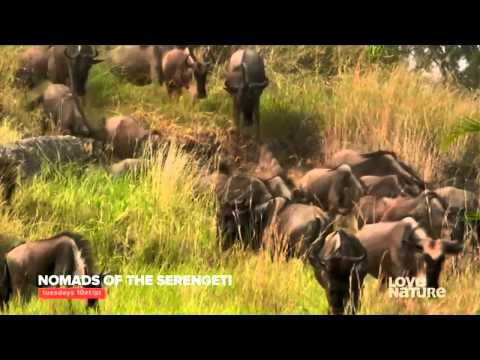 Love Nature HD Canada - Adverts July 2015 [King Of TV Sat]