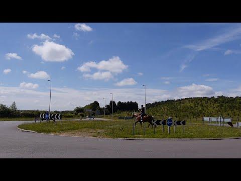 Horse Whisperer Cures Traffic Phobic Horse