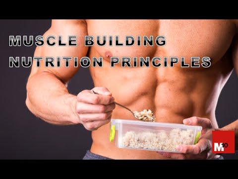 Muscle Building - Nutrition principles