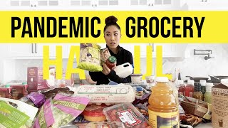 14 DAY PANDEMIC GROCERY HAUL! What I'm buying to survive a quarantine (Trader Joe's Edition)