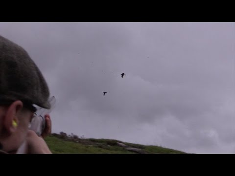 The Shooting Show - high-velocity grouse shooting on Farndale Moor