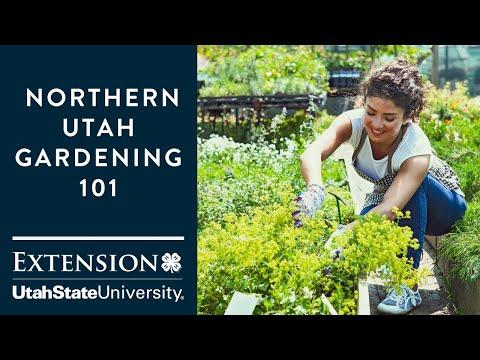 Gardening 101 for Northern Utah