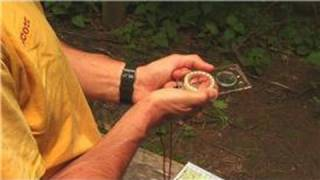 Wilderness Survival Tips : Using a Compass