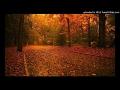DAARU PEEKE DANCE (TAPORI MASHUP) DJ GAURAV mp3 songs