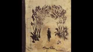Download Sigur Rós - Hoppipolla + Meo Blodnasir (High Quality) MP3 song and Music Video